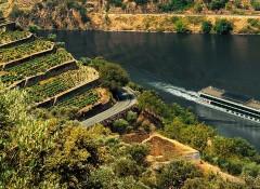 Experiência pelo Rio Douro com A-ROSA